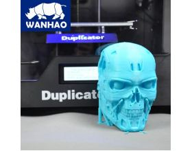 3d printer wanhao duplicator 4s prints